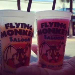Flying Monkeys, Key West, FL