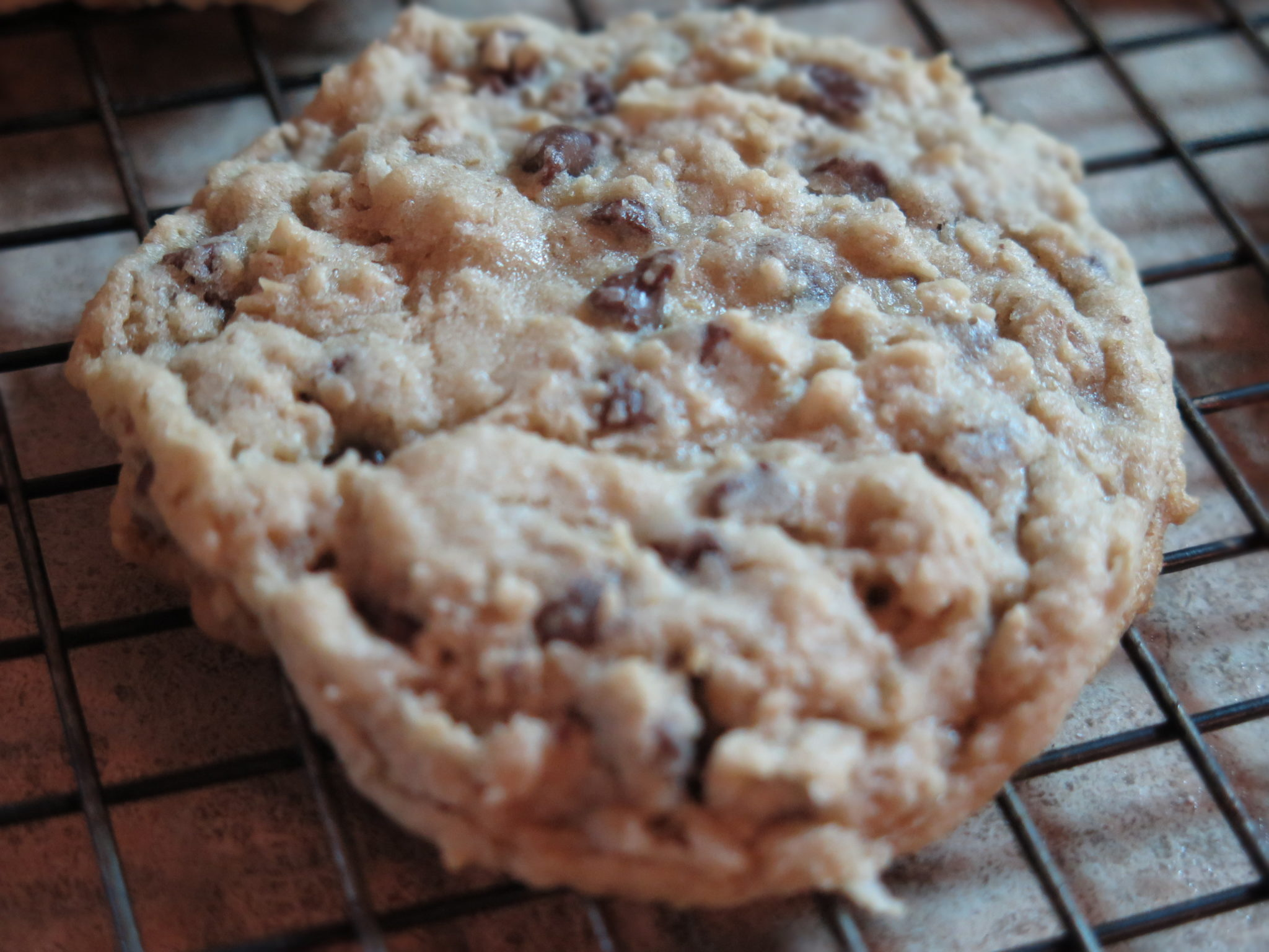 Potbelly Oatmeal Chocolate Chip Cookie Recipe