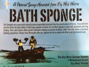 key west sponge market