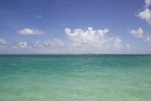 Sandbar Chillin Key West