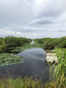 Key west road trip everglades national park canal