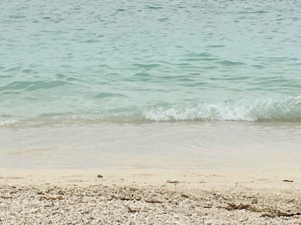 dig beach sand and water best beach in key west